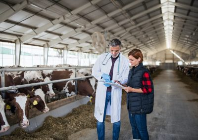 Recrutamento pessoal para setor agrícola